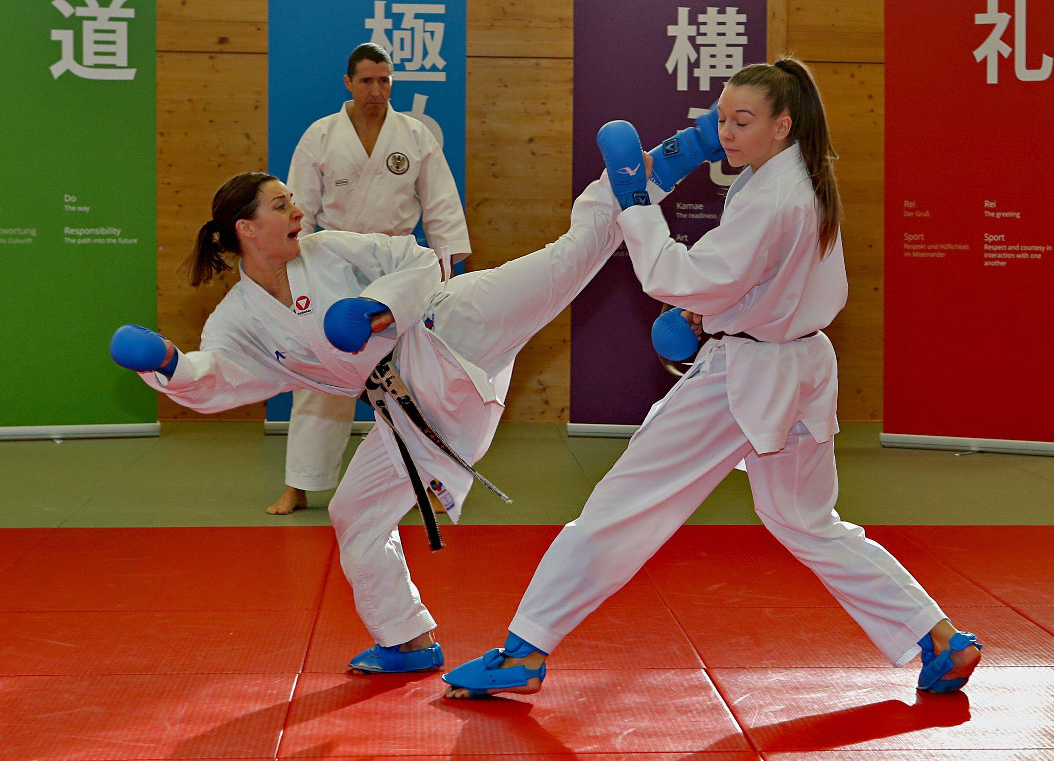 Karate WM